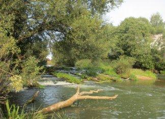 Пойти в поход (Походы выходного дня (ПВД)): Сплав по реке Киржач