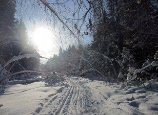 Пойти в поход (Походы выходного дня (ПВД)): Лыжный ПВД Поварово-Морозки