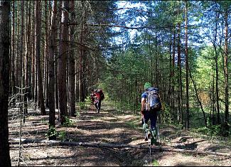 Пойти в поход (Походы выходного дня (ПВД)): Пеший ПВД на 100 км